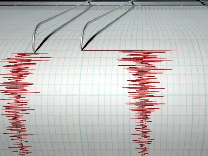 Слабо среднощно земетресение е усетено в Пловдивско
