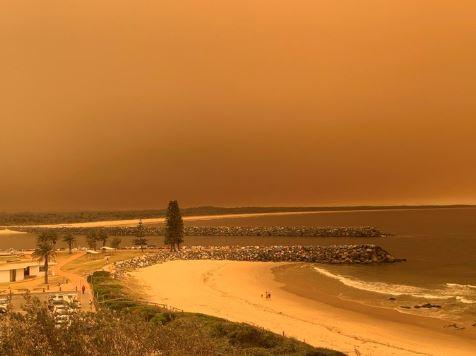 Пожари бушуват в Австралия! 90 огнища са обхванали десетки хиляди хектари