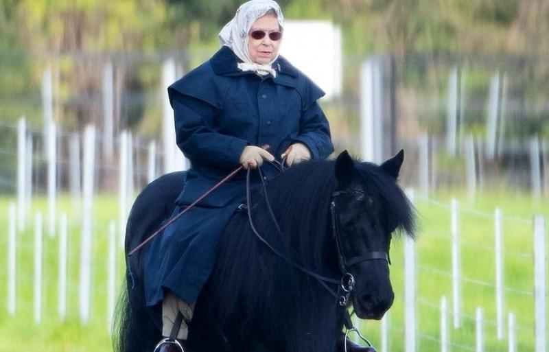 Кралицата на кон! И на 93 Елизабет II не се спира. За нея възрастта е цифра