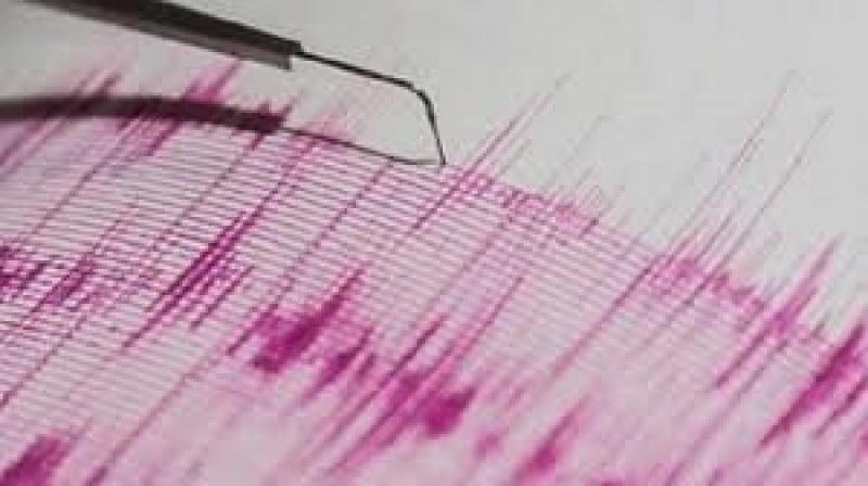 Ново земетресение от 4,4 по Рихтер разтърси Албания