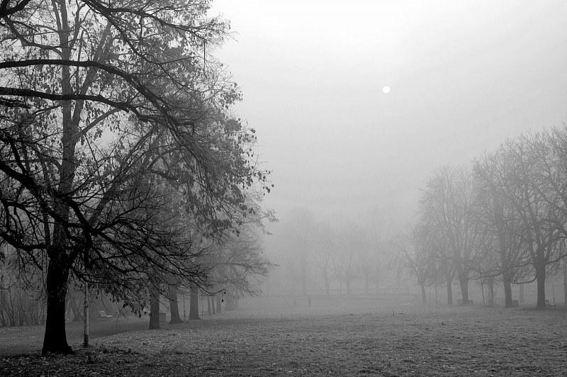 Отново мъгливо, студено – чакат се поледици! Сняг ще вали, но за ден