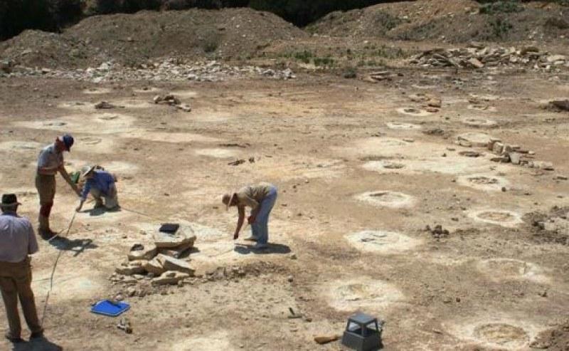 Откриха останки от динозаври от Юра
