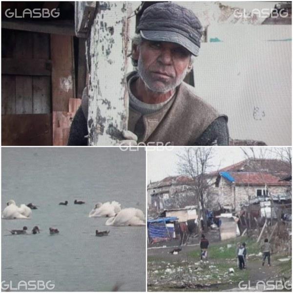 Дробчета от лебед и задушен пеликан - менюто на ромски фамилии от Бургас СНИМКИ