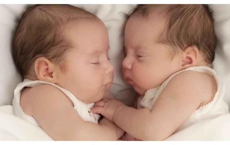 Бум на близнаци в Пловдив