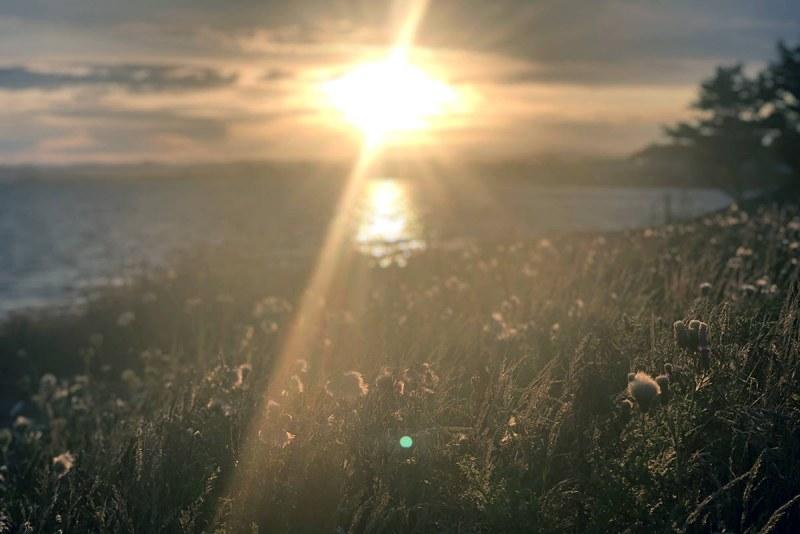 Новата седмица тръгва със слънце. Градусите ще гонят 34