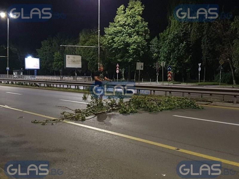 Протестиращи отчупиха клони от дървета и ги пльоснаха на