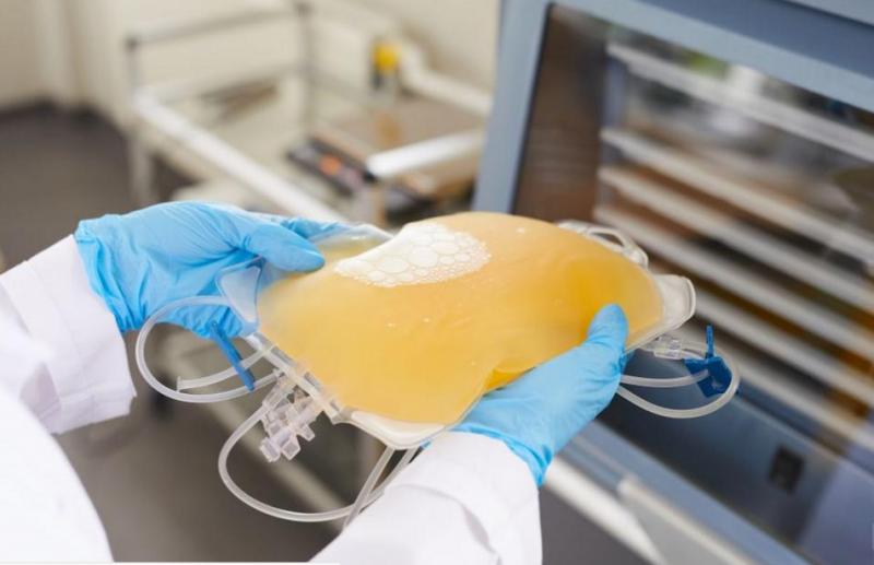 Какво трябва да знаем, за да дарим животоспасяваща кръвна плазма