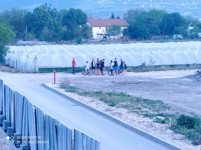 Деца нападнаха оранжерия в Пловдив и унищожиха ягоди. Защо?