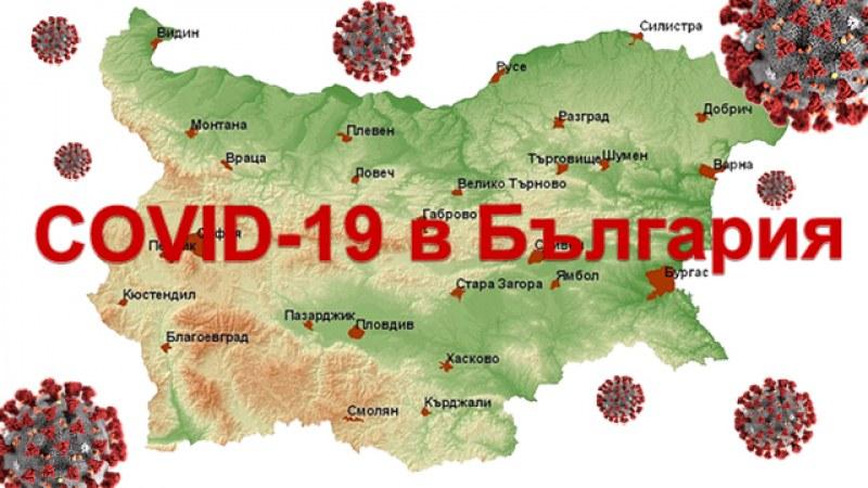 COVID-19 се свива. Отмина ли третата вълна? Накъде върви България?