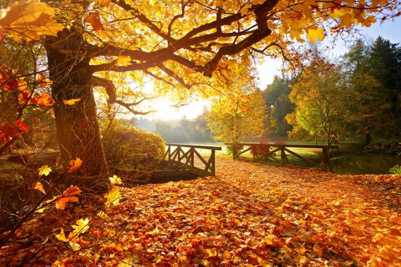 Хубавото време свършва до ден-два. Идва есен с температури под 20°C