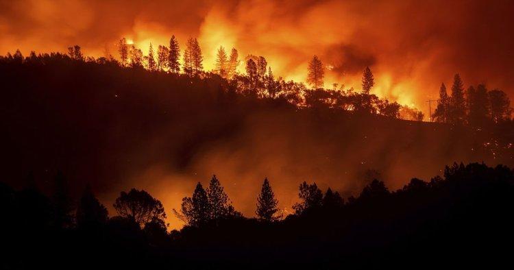 Кремъл: Пожарът в Сибир е умишлен!