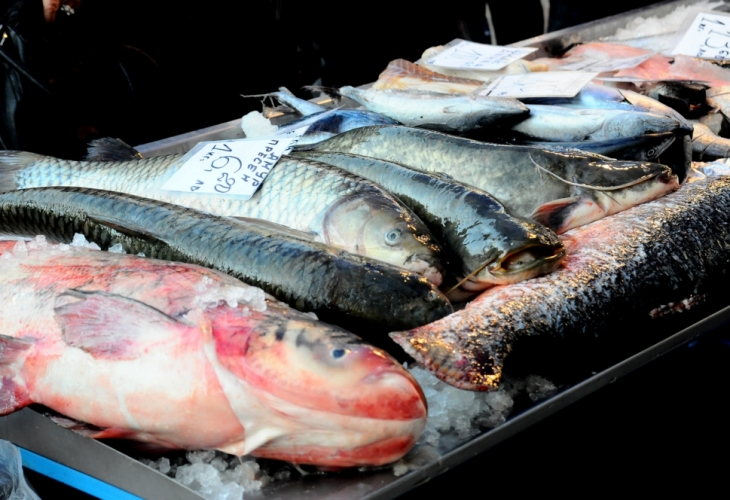 Нова отрова плъзна на българския пазар, риба с олово уврежда черния ни дроб, бъбреците и костите! (ВИДЕО)