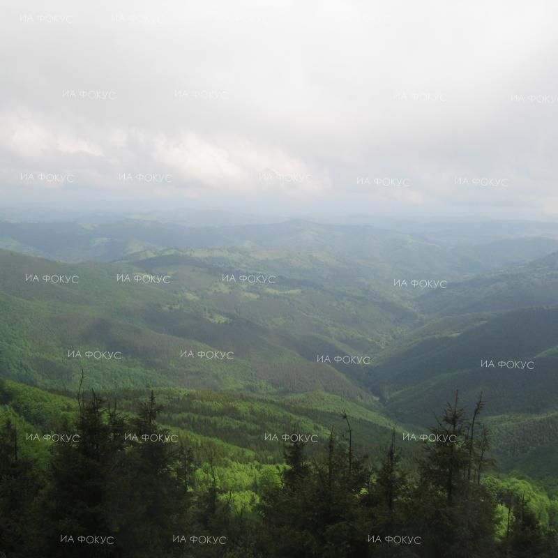 Велико Търново: Полицаи са спасили 76-годишен мъж, изгубил се в Еленския балкан