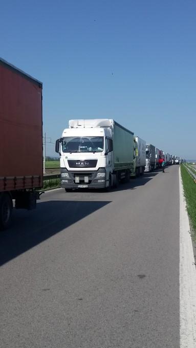 """Видин: Трафикът в участъка на главен път Е-79 в областта в посока ГКПП """"Дунав мост 2"""" е интензивен"""