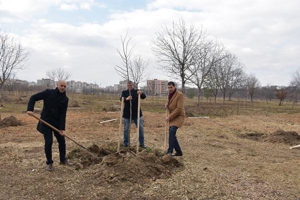 Габрово: 18 броя държавни горски разсадници с обща площ от 3500 хектара функционират на територията на Северноцентрално държавно предприятие в града