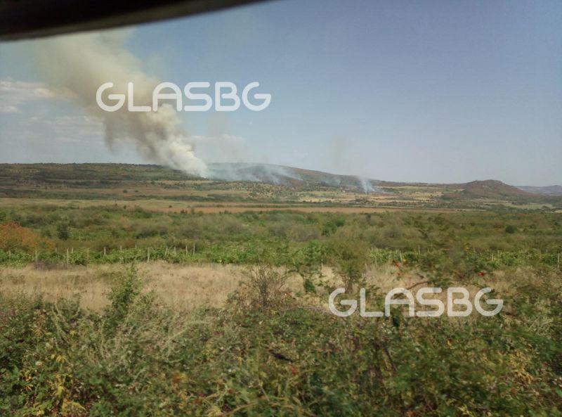Гори сметище в Пазарджишко! Огънят обхвана и близката гора СНИМКИ