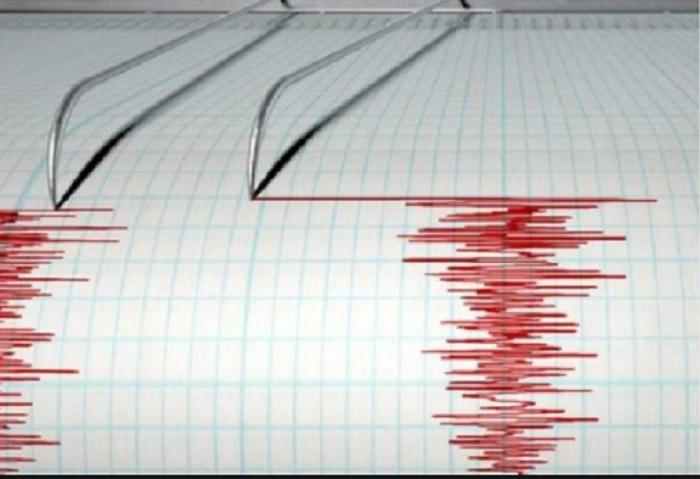 Силно земетресение удари Лос Анджелис ВИДЕО