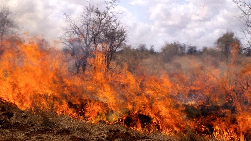 Висока опасност за пожари в 11 области