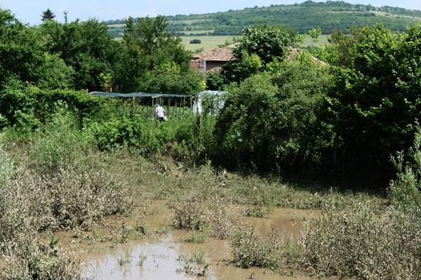 Русе: Залети са стотици декари земеделска земя и са унищожени десетки пчелни кошери на територията на селата Дряновец и Копривец след проливни валежи
