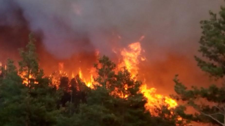Предупреждение за екстремна пожароопасност у нас