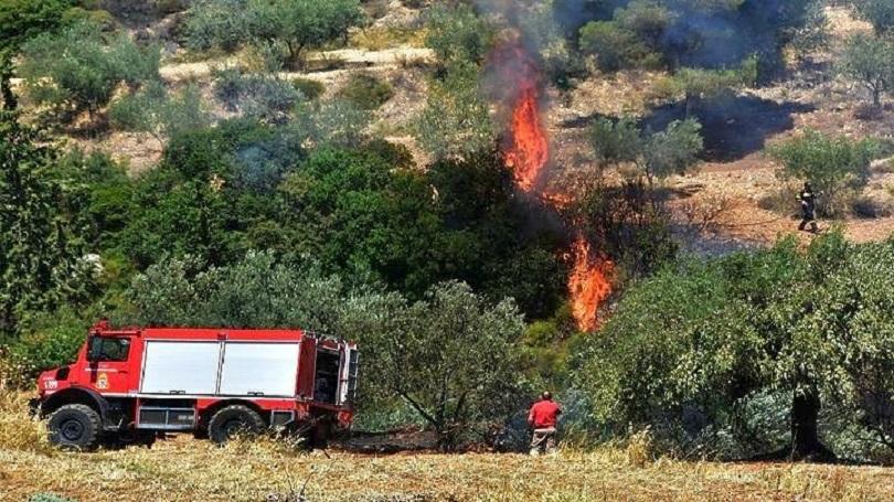 Десетки пожари бушуват в южната ни съседка. Евакуират ваканционни селища.