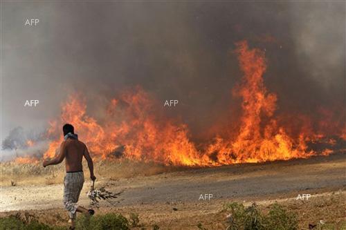Шумен: 300 кв.м посеви са унищожени при пожар в местността Хиподрума край с. Тодор Икономово