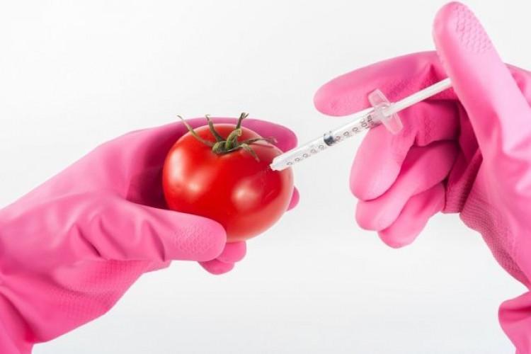 Ето как да разпознаете ГМО плодовете по етикета