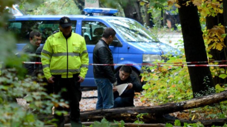 Млад дървосекач загина край Паталеница